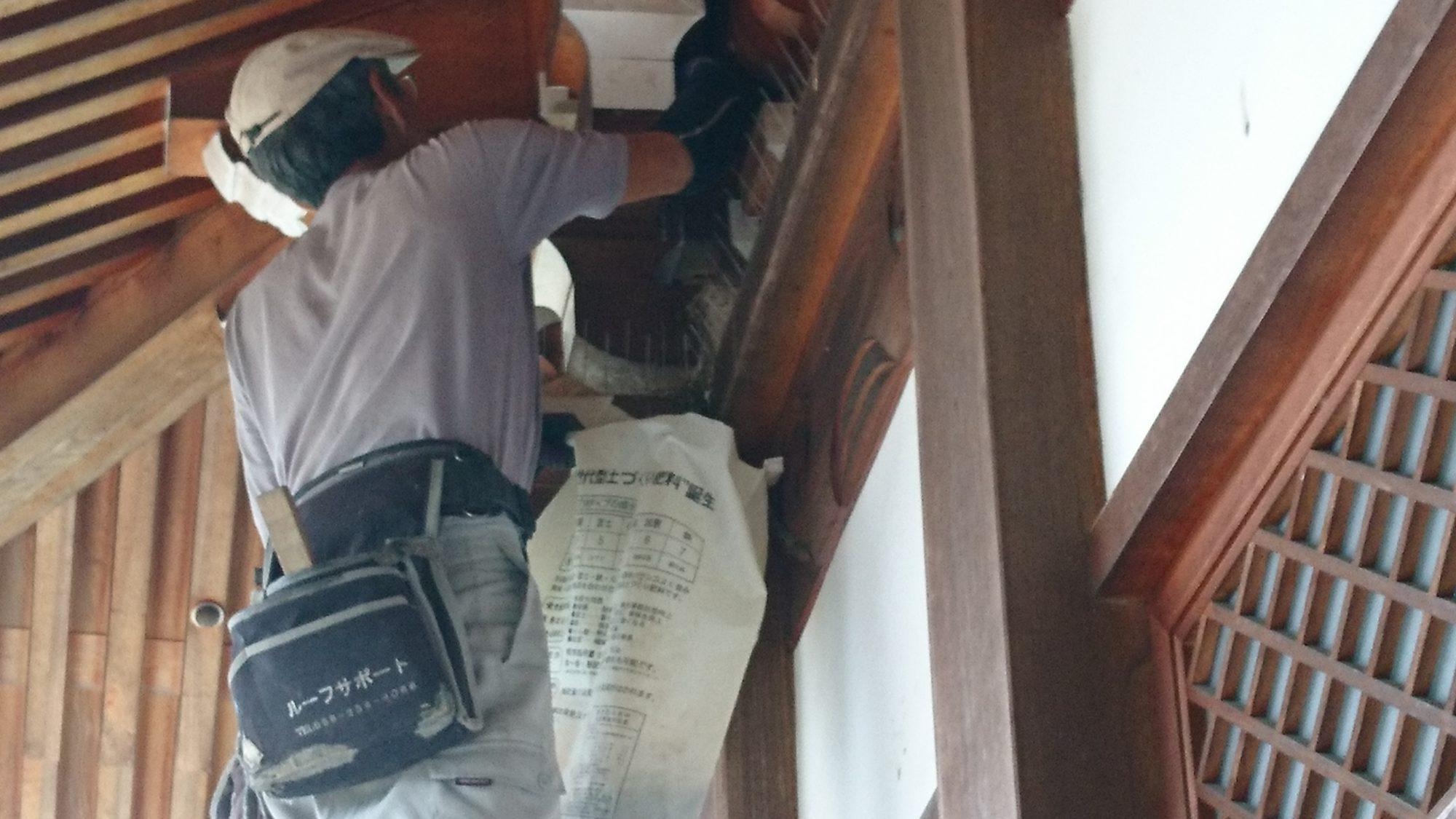 一宮市のお寺で鳥の巣の撤去作業をしました。