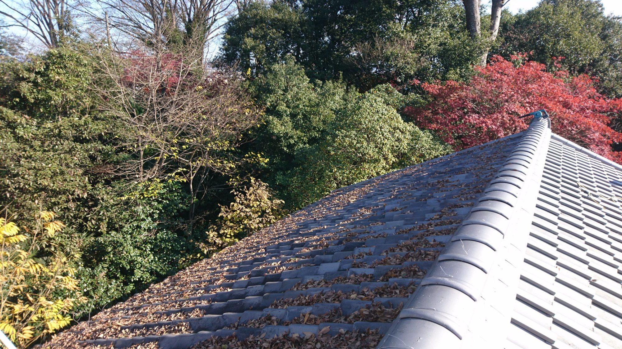 本巣市で、屋根の点検・掃除をしています。